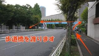 05歩道橋.JPG
