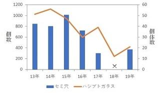 190831セミとハシブト.jpg