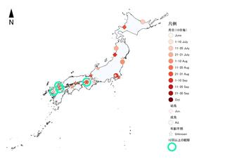 ソリハシシギ2019前線シギチ秋.jpg
