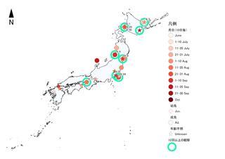 トウネン2019前線シギチ秋.jpg