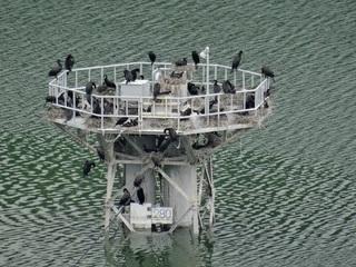 城山湖コロニー2.jpg
