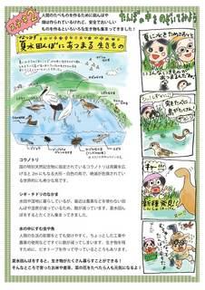 夏水たんぼ 2013秋 (1)_ページ_2.jpg