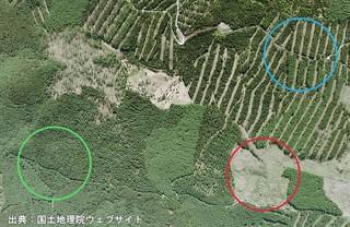 植林地航空写真CCB20101-C6B-30s調査イメージ.jpg