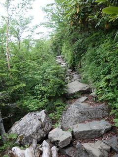 歩きやすい登山道P7250075s.jpg