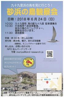 砂浜の鳥観察会チラシ完成QR版.jpg