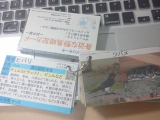 野鳥カード.jpg