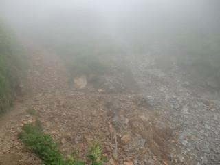 霧の道P7250066s.jpg