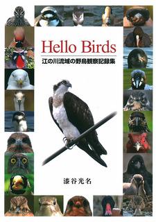 HelloBirds漆谷光名_表紙.jpg