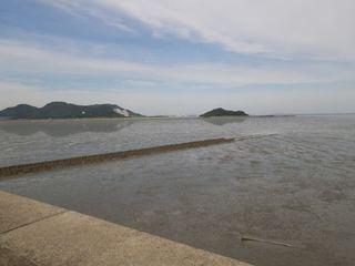 IMGP9111曽根干潟.jpg