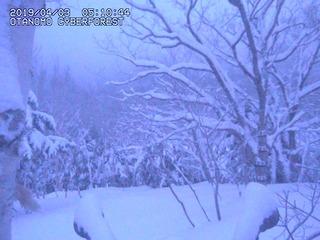 otanomo-webcam19040305104500.jpg