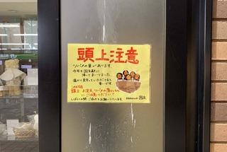 国立駅ポスター2.jpg