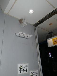 P1180962.jpg