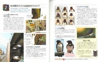 swbook_P3.jpg